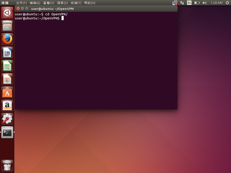 Setting up OpenVPN in Linux Ubuntu, step 4