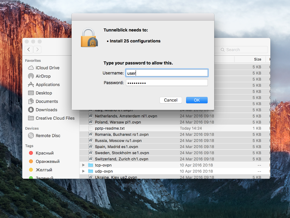 Setting up OpenVPN on Mac OS X, step 7