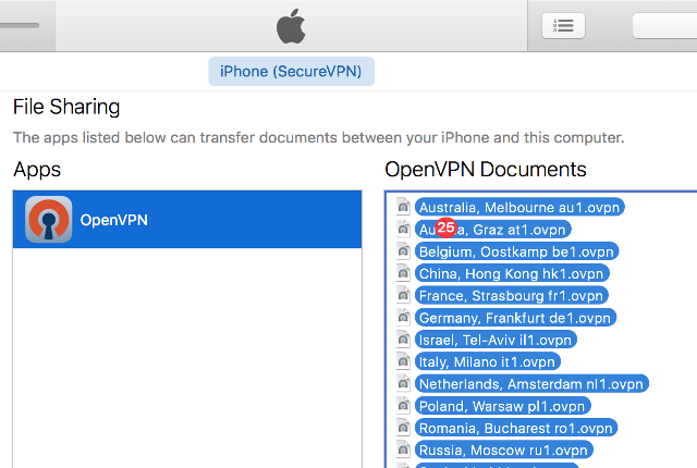 Setting up OpenVPN on iOS, step 4