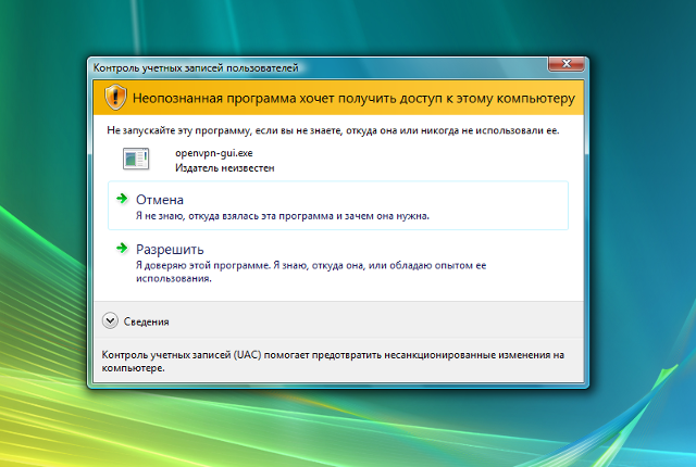 Настройка OpenVPN на Windows Vista, шаг 15